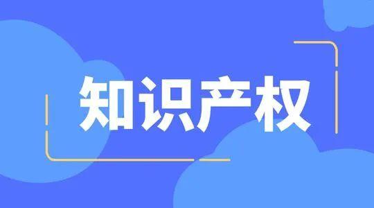 蓉创智汇入选成都市知识产权智库维权援助机构啦!!!!